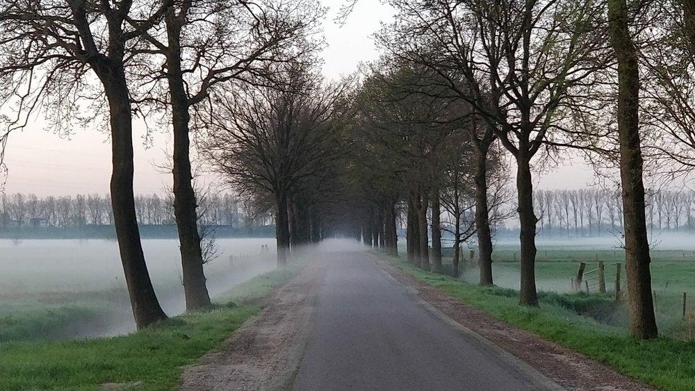De provinciale wegenplannen bedreigen het Binnenveld, een belangrijk uitloopgebied voor de Wageningse bevolking.