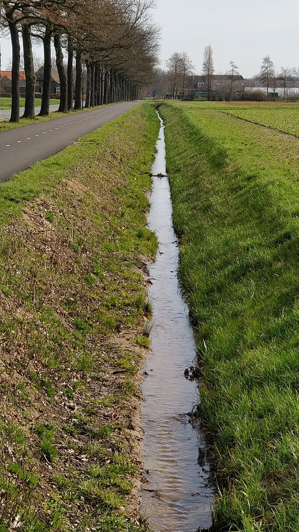 Dit is wat er van de geplande ecologische verbindingszone terecht is gekomen.