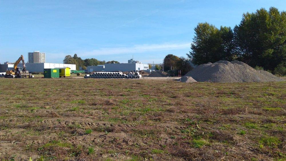 NP2 bouwrijp maken zonder ontheffing- in leefgebied poelkikker_half okt 2018.jpg