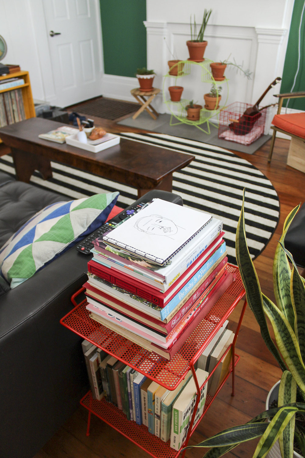 living room books and plants