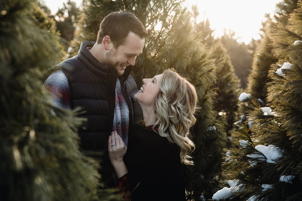 Christmas Tree Farm Engagement - International Wedding Photographer - Elopement