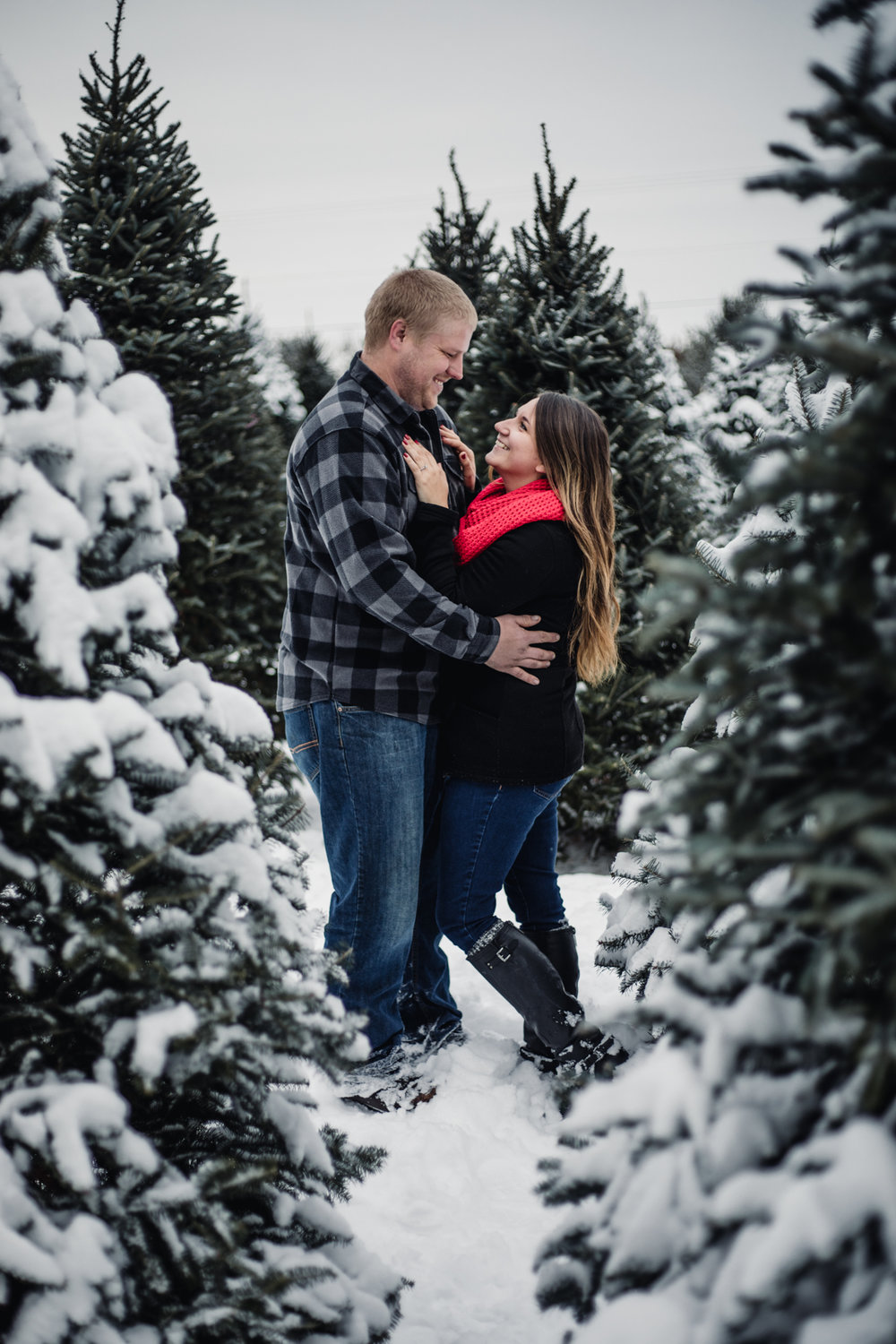 Christmas Tree Farm Engagement - Holiday Engagement - Winter Engagement