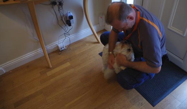 alarm engineer and dog