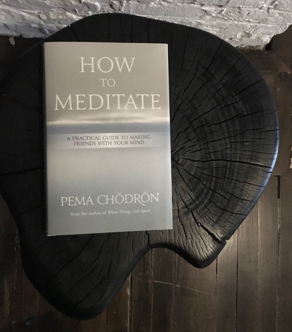 pema_chodron_meditaiton_book_chill_chicago_mini.jpg