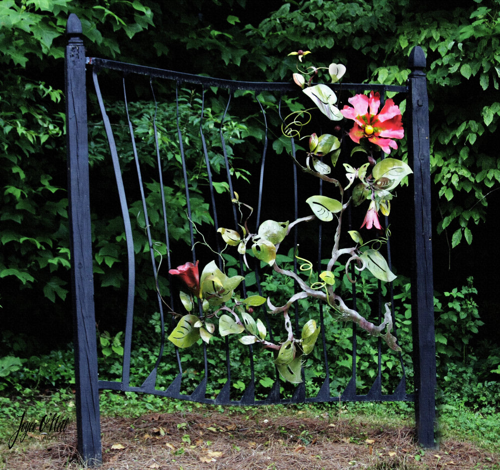 Moonvine trellis with red flowers copy.jpg