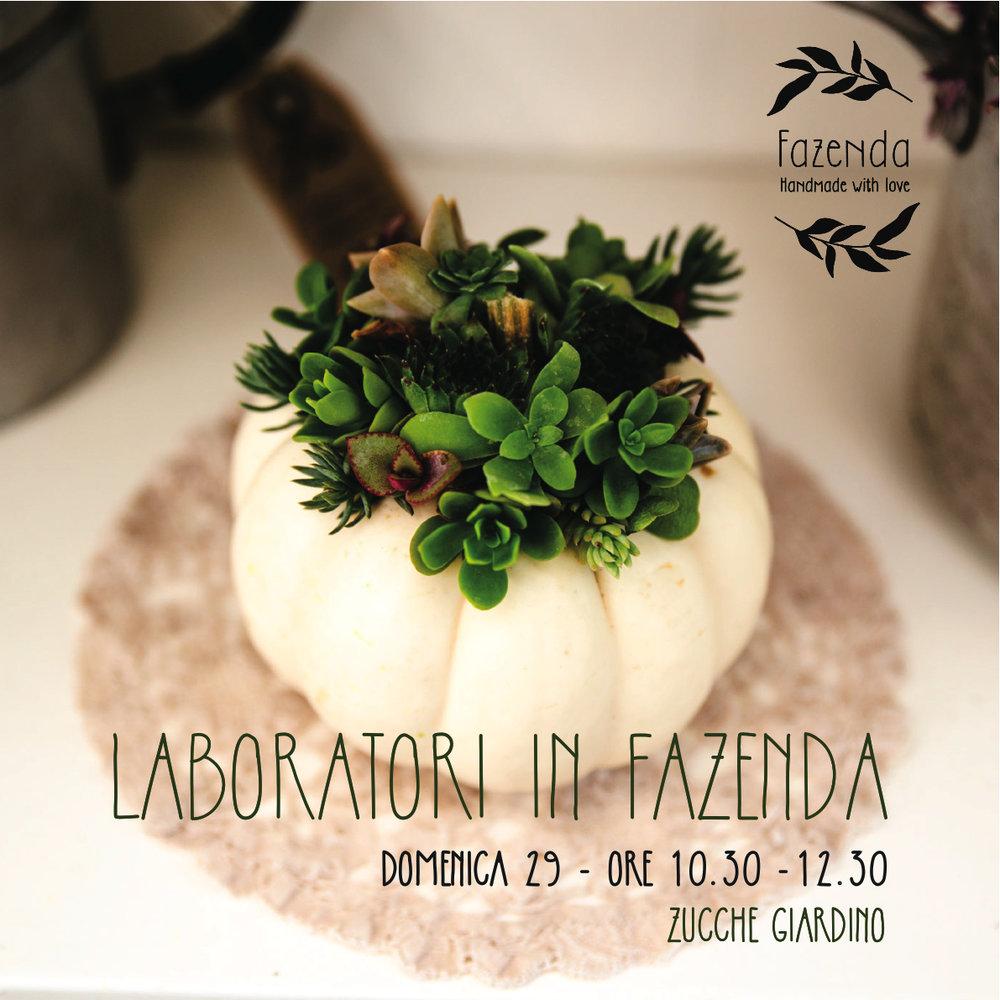 ZUCCHE lab FAZ 29-11-17.jpg