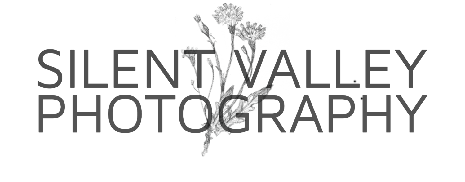 Silent Valley Photography