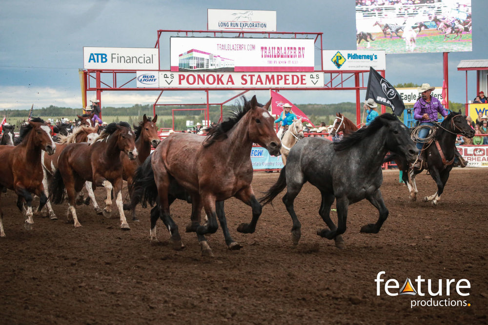 PONOKA STAMPEDE LED SCREENS