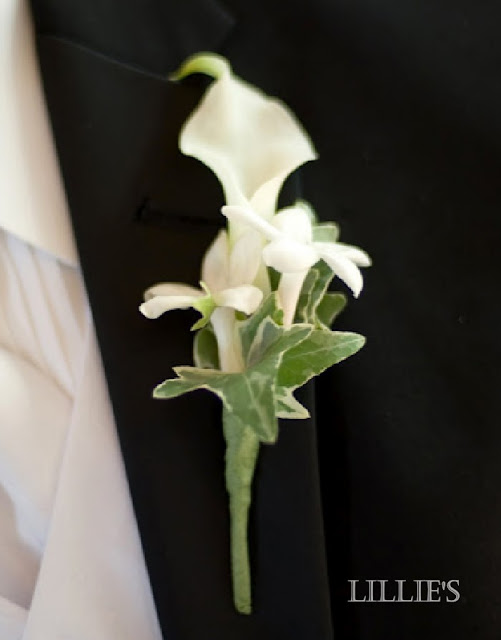 calla lily boutonniere with stephanotis, ivy.jpg