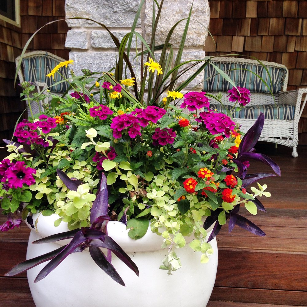 Getting The Most Out Of Your Summer Annuals Shopping Adventure