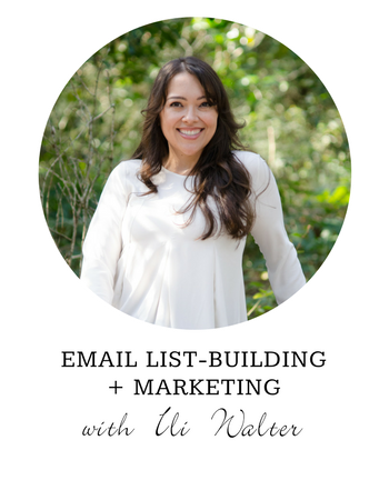 Email list building and marketing for therapists