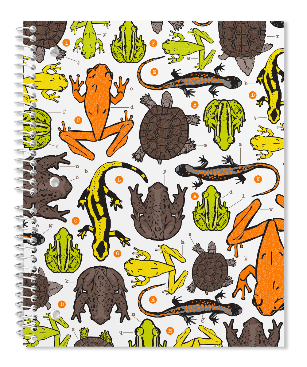 spiral-binder-frogs.jpg