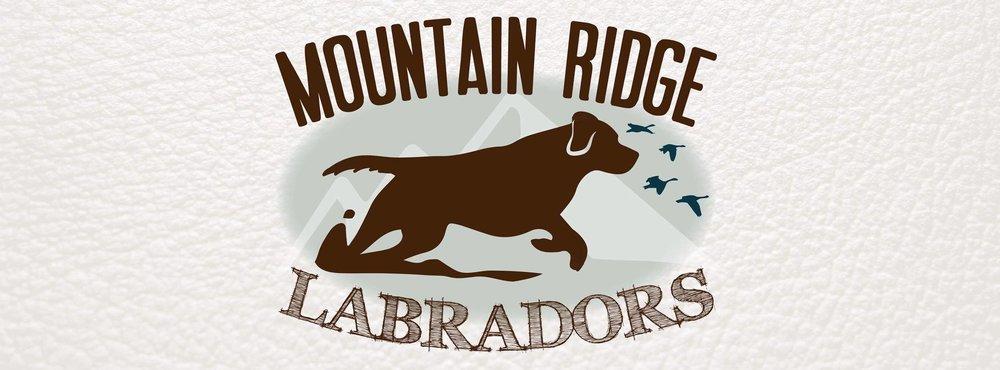 mountain ridge labradors logo.jpg