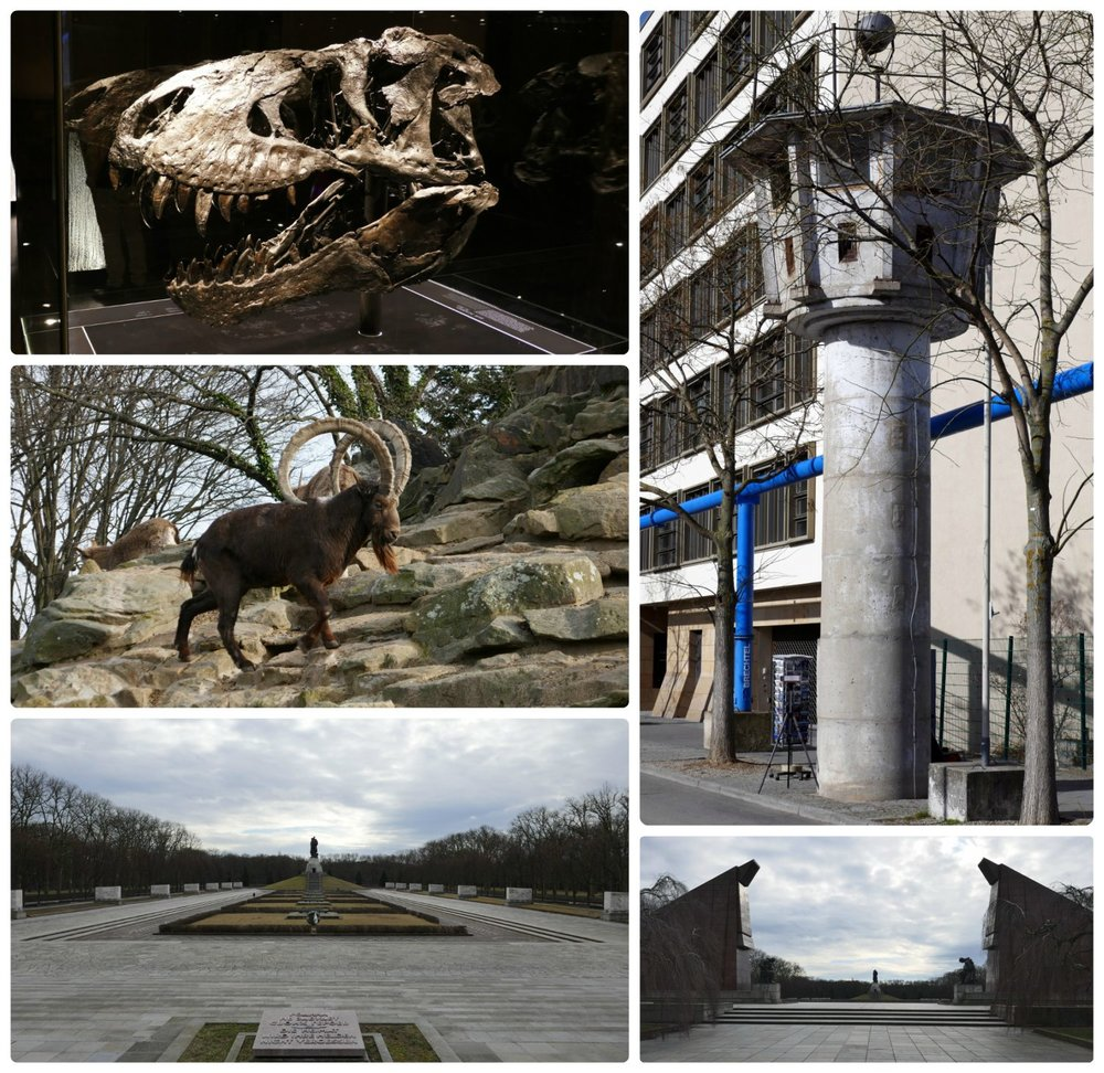 Berlin, Germany. Clockwise (from the top left): T. Rex dinosaur skull at Museum für Naturkunde (Natural History Museum), GDR watch tower, Berlin Zoo, Soviet War memorial Treptow