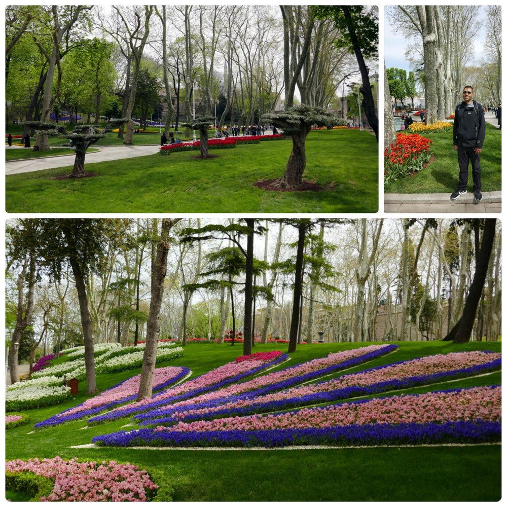Gülhane Park was a beautiful park, especially during the Istanbul Tulip Festival!