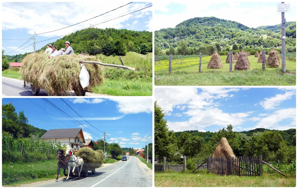 Left : Horse drawn carriages pulling people, hay, lumber, etc.  Right : Traditional Romanian Haystacks. Look closely at the top image and to the left you'll see the stick frame built but not yet covered in hay.