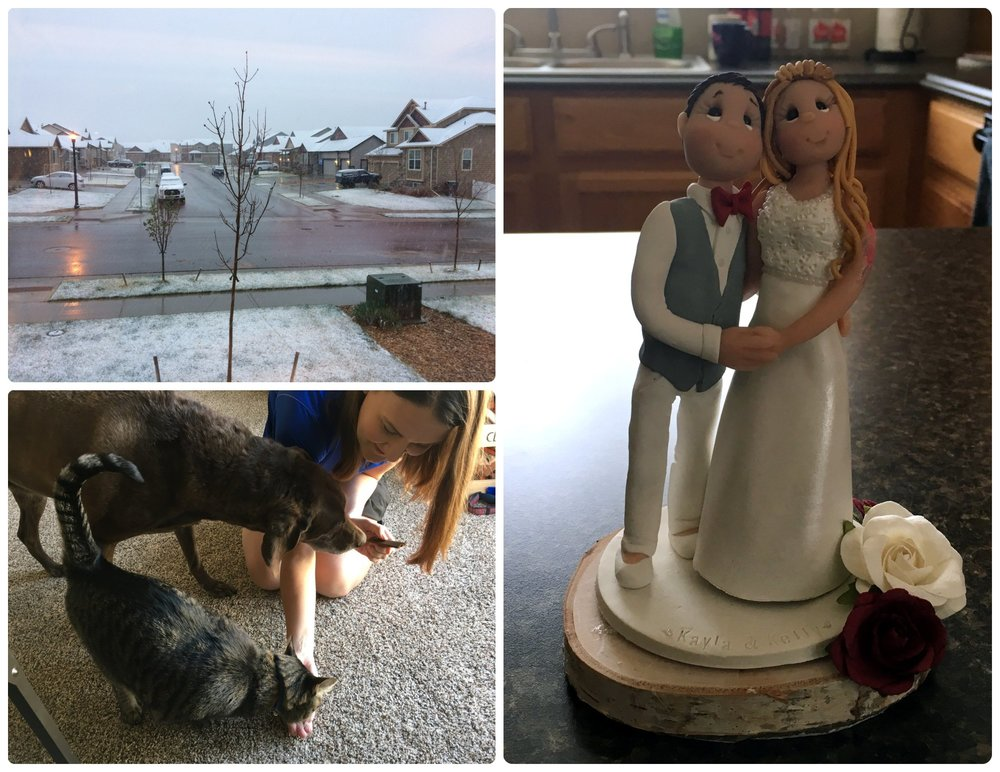 Our Northern Colorado House Sitting Job (clockwise from the top left): It was sunny and 75 degrees one day and then we woke up to light snow the next day! Kel and Kayla's custom wedding cake topper, Bailey and Cupid loved their treats!