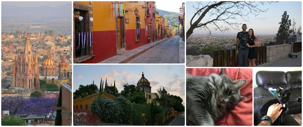 A house sit in San Miguel de Allende, Mexico is what spurred our trip to Mexico in the first place!