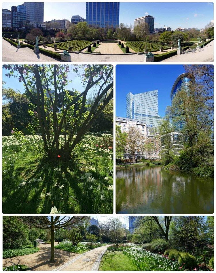Botanical Garden of Brussels in Brussels, Belgium.
