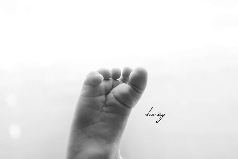 Denay Shook Photography, LLC Newborn Photographer