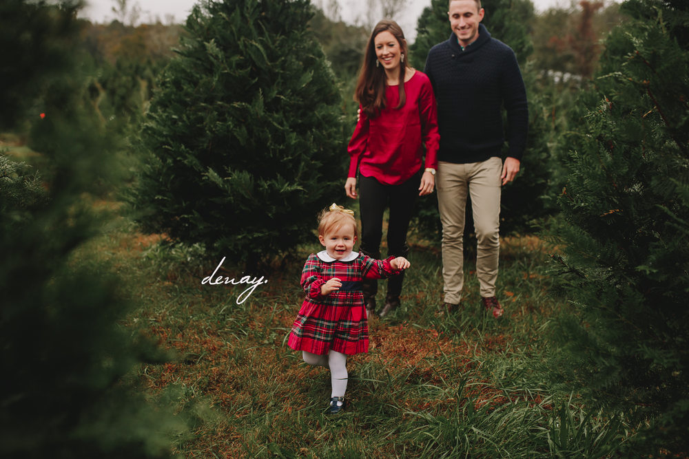 Thompsons Tree farm Session Denay Shook Photography, LLC