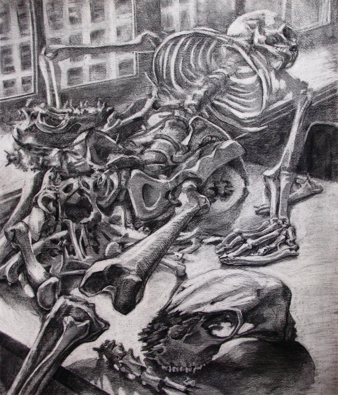 skeletalspace_o.JPG