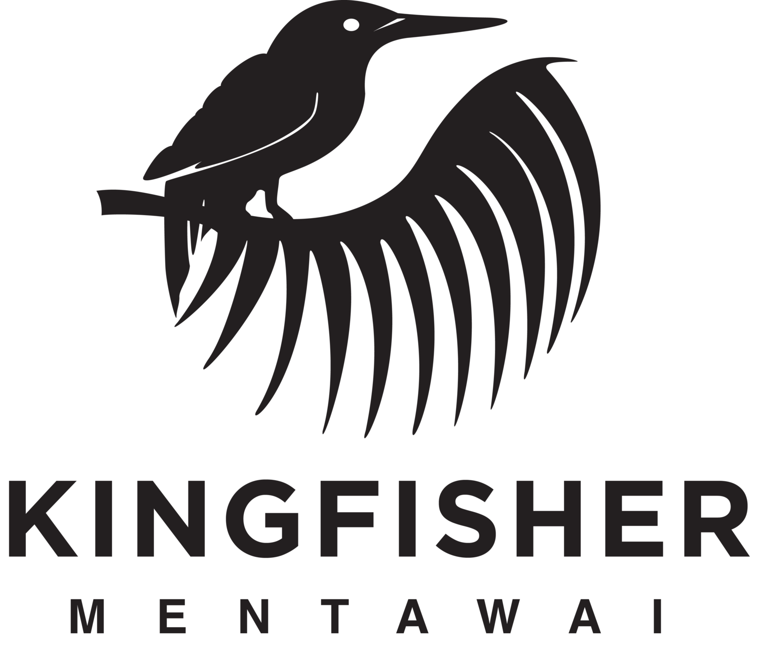 Kingfisher | Surf Resort | Mentawai, Indonesia