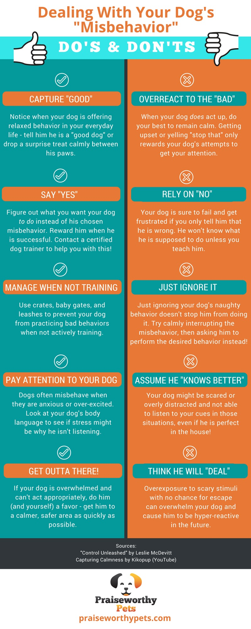 Dealing With Your Dog's Misbehavior.jpg
