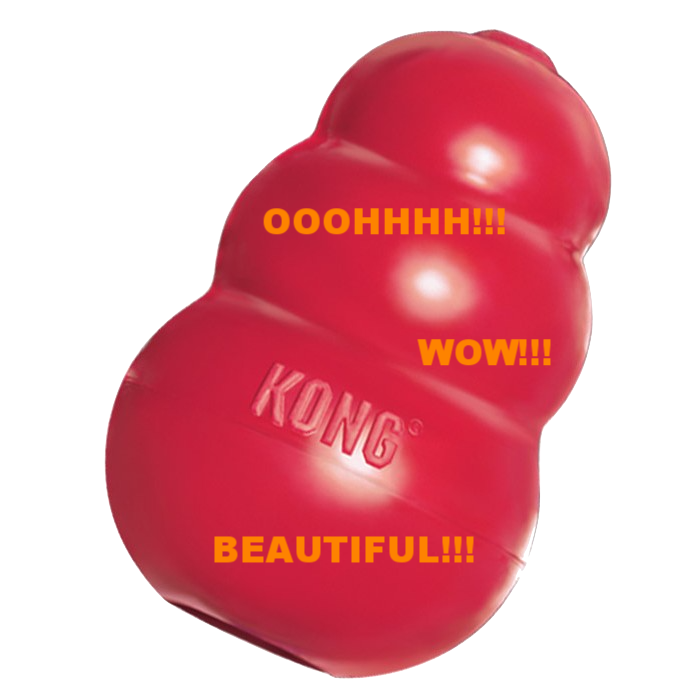 No... The KONG Company has not paid me for this glowing recommendation of their product. I just really like it :)