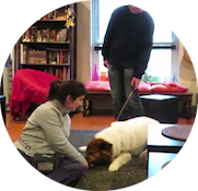 Coaching Sessions - Naomi teaches you and your dog the skills you need to see behavior change - then it's time for you to practice!