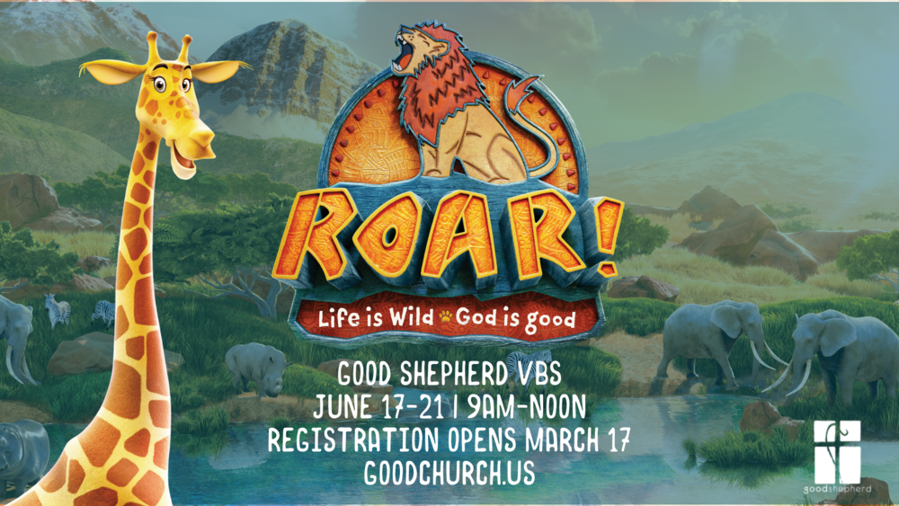 vbs 2019 save the date web size.png