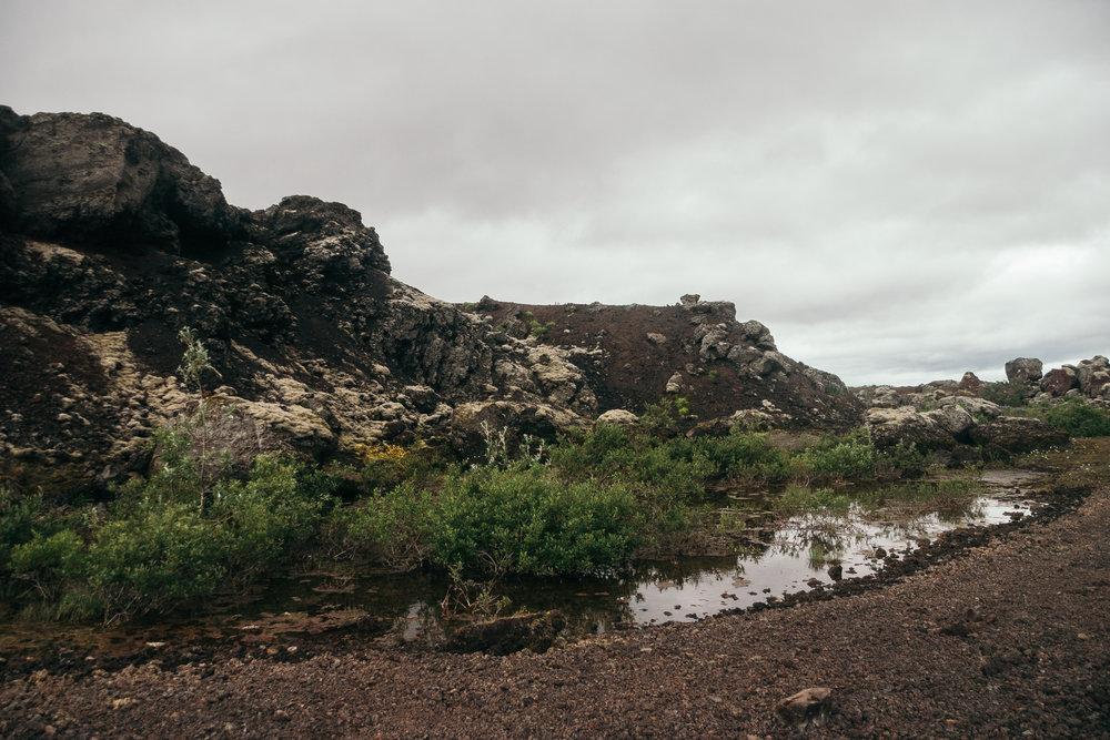 Chantal van den Broek, vakantie IJsland 2018 (548).jpg
