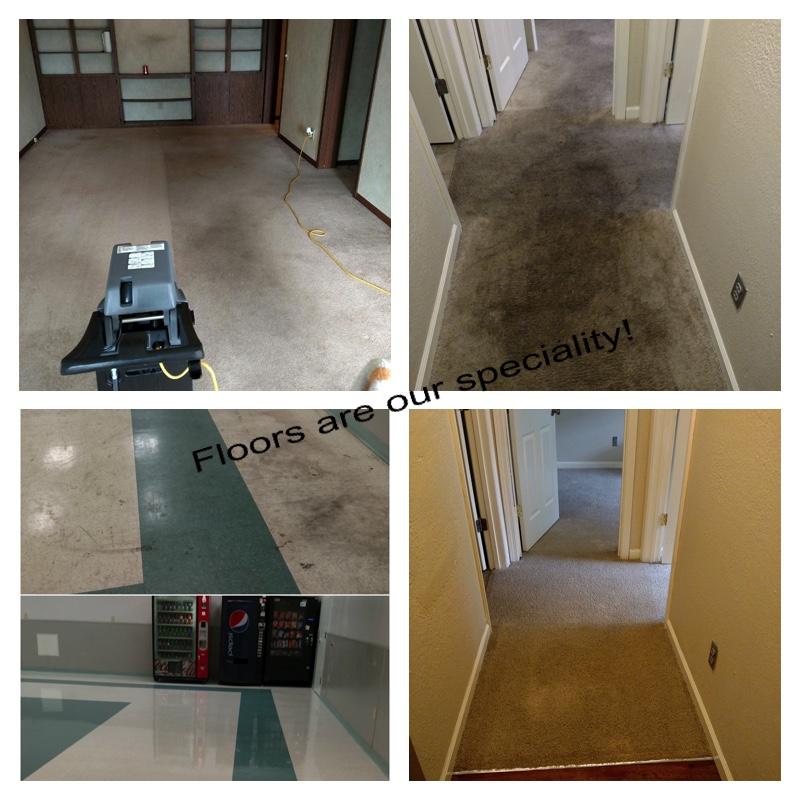 Floor Specialist.jpg