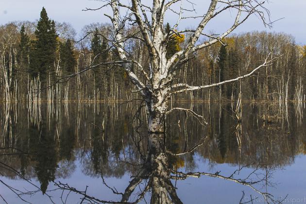 Elk_Trail-14.jpg