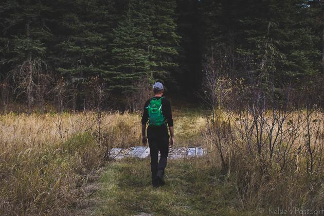 Elk_Trail-24.jpg