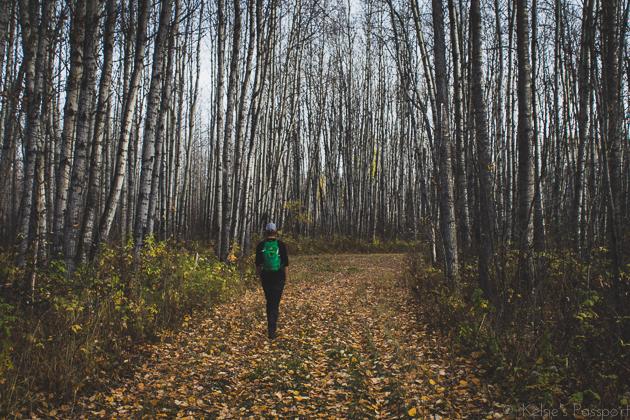 Elk_Trail-26.jpg