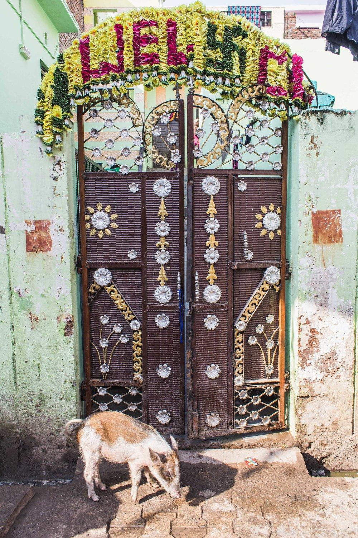 India_Agra-14.jpg