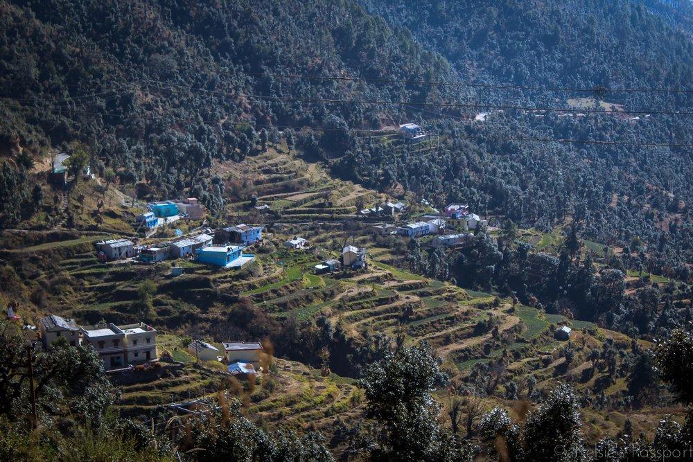 India_Himalayas-12.jpg