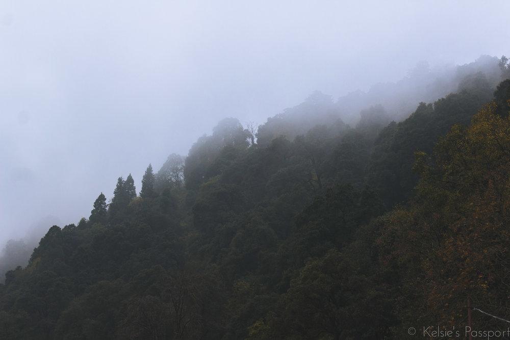 India_Himalayas-19.jpg