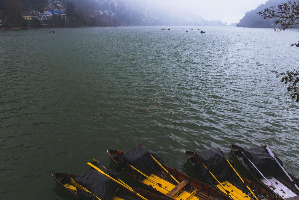 India_Himalayas-20.jpg