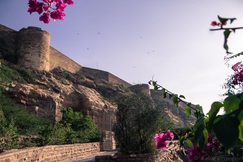 India_Jodhpur-24.jpg