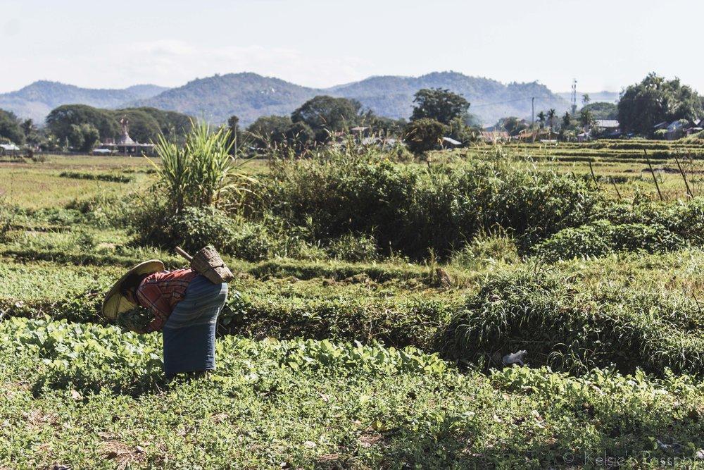 KP_Myanmar-68.jpg