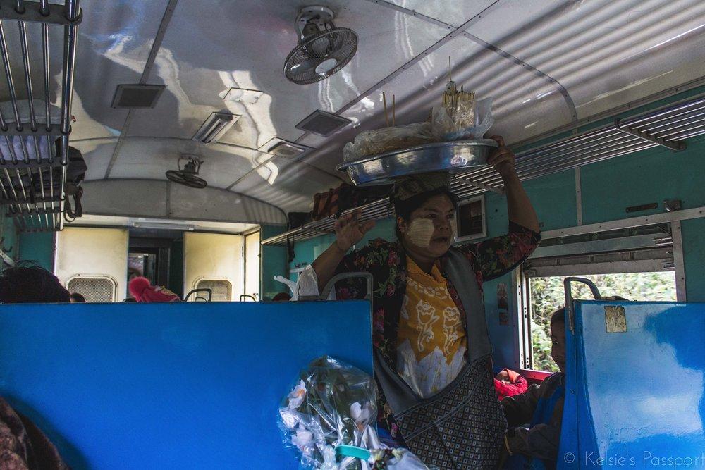 Burmese_Train-4.jpg