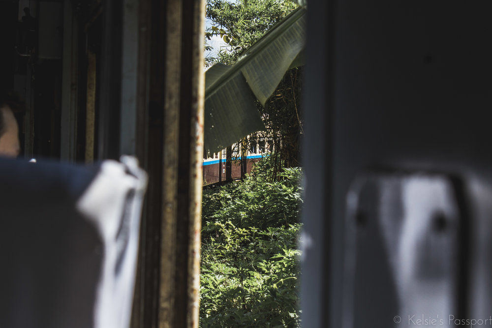 Burmese_Train-14.jpg