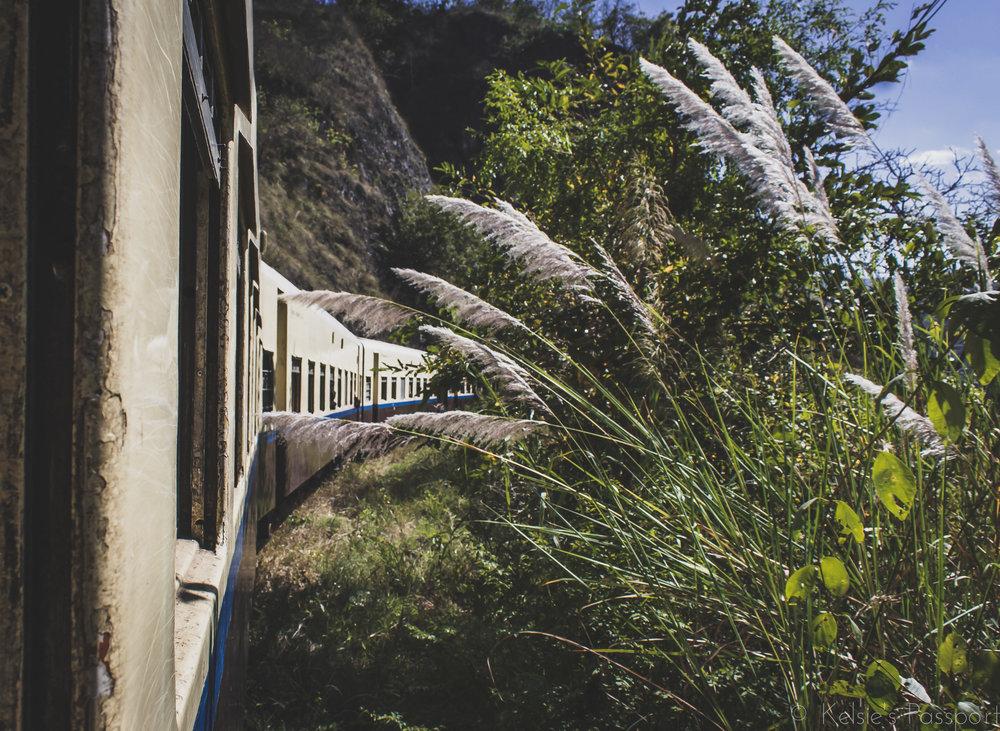 Burmese_Train-13.jpg