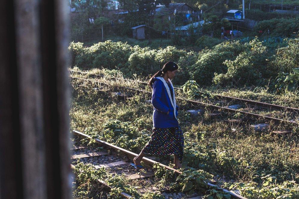 Burmese_Train-22.jpg