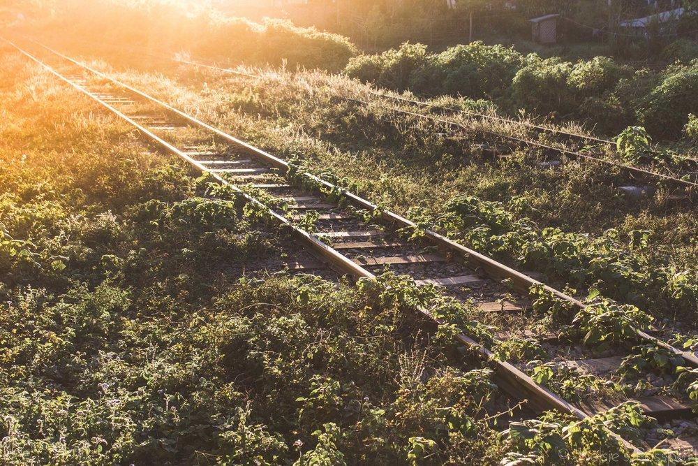 Burmese_Train-23.jpg