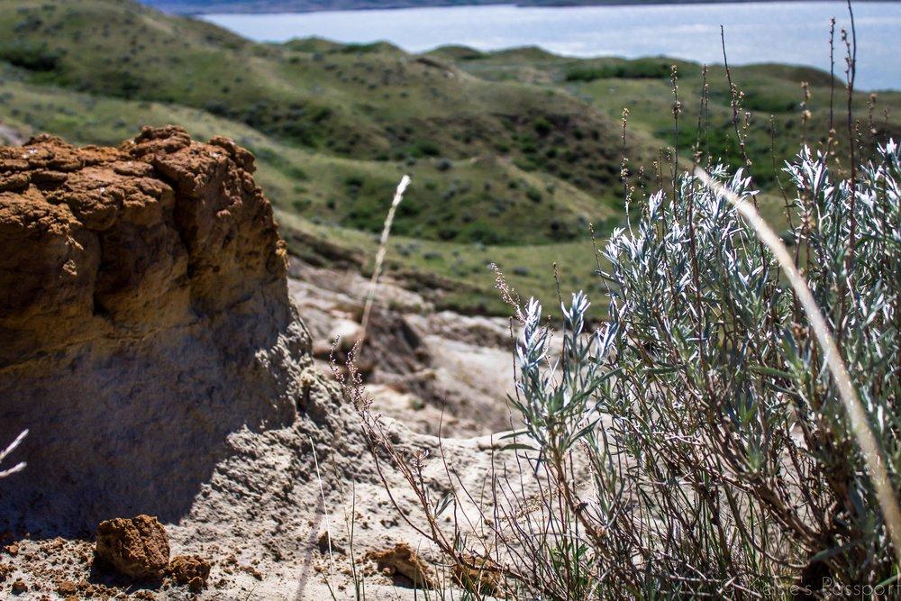 Sandcastles-7.jpg