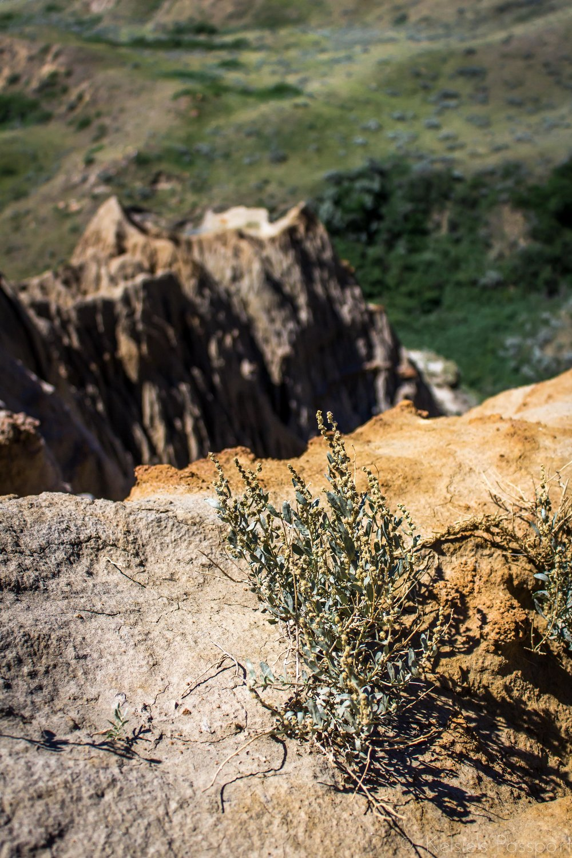 Sandcastles-9.jpg