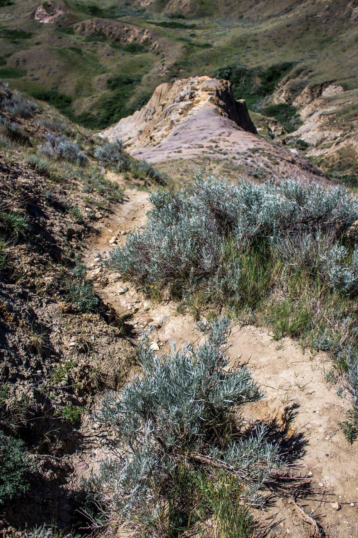 Sandcastles-11.jpg